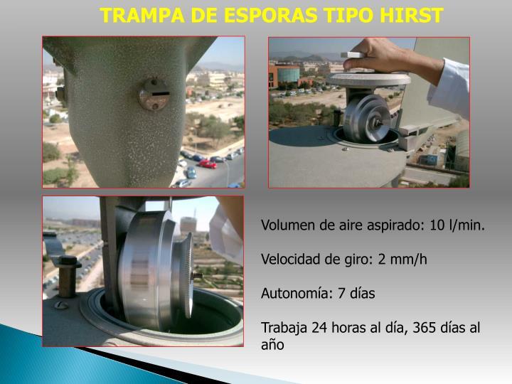 TRAMPA DE ESPORAS TIPO HIRST