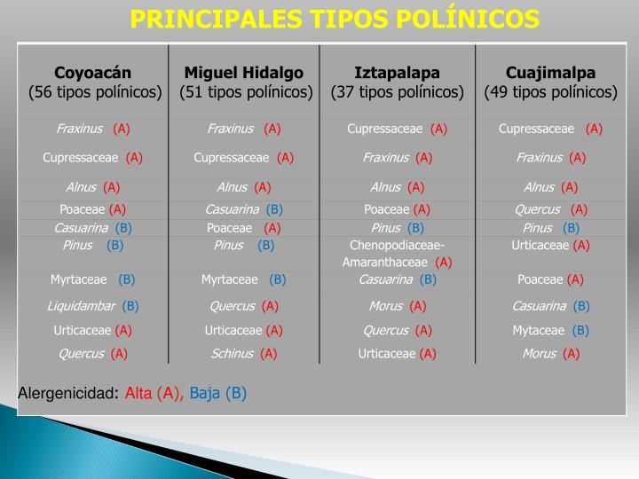 PRINCIPALES TIPOS POLÍNICOS