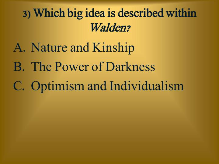 3) Which big idea is described within