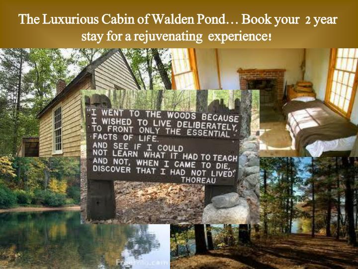 The Luxurious Cabin of Walden Pond… Book your  2 year stay for a rejuvenating  experience!