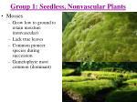 group 1 seedless nonvascular plants1