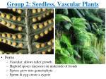 group 2 seedless vascular plants1