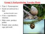 group 3 seed producing vascular plants