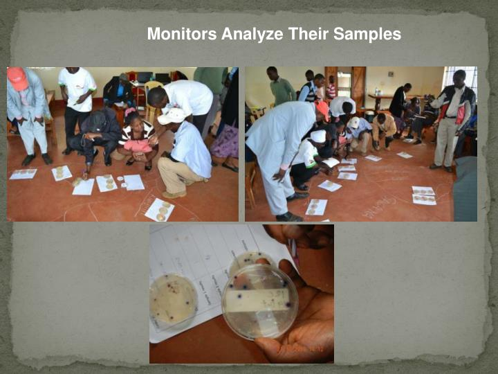 Monitors Analyze Their Samples