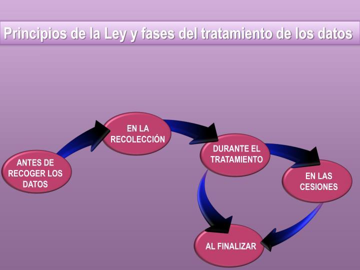 Principios de la Ley y fases del tratamiento de los datos