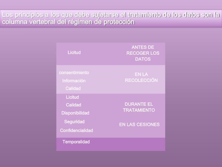 Los principios a los que debe sujetarse el tratamiento de los datos son la columna vertebral del régimen de protección