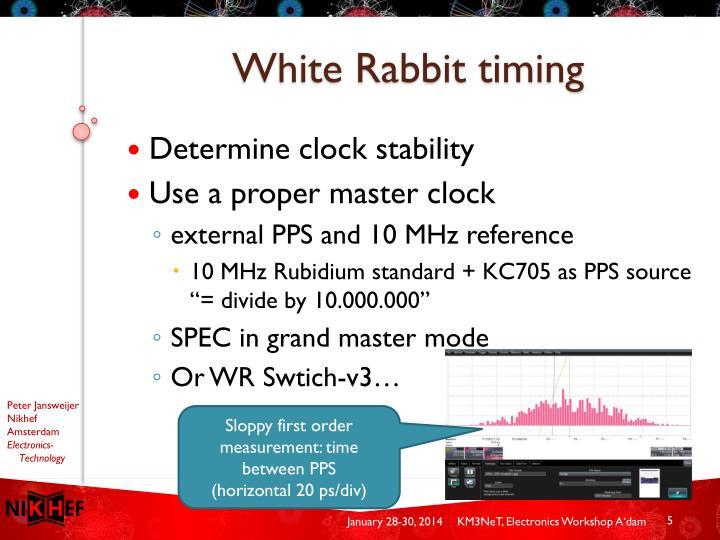 White Rabbit timing