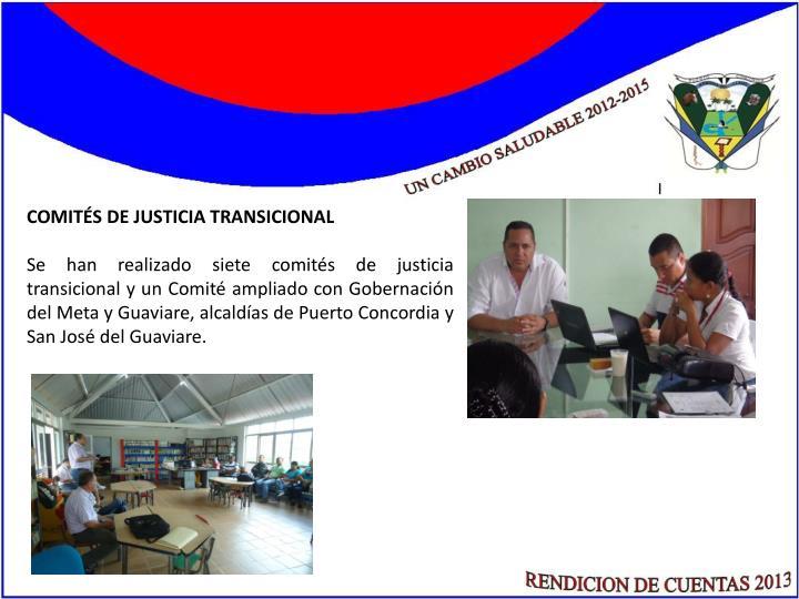 COMITÉS DE JUSTICIA TRANSICIONAL