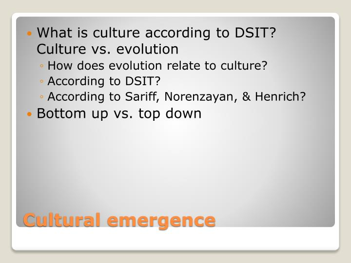 What is culture according to DSIT?