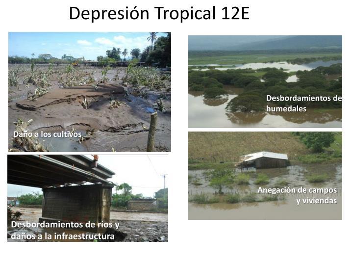 Depresión Tropical 12E