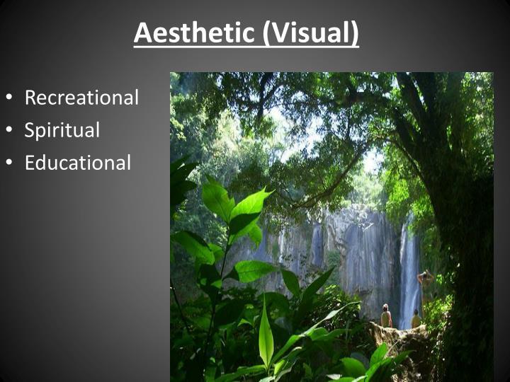 Aesthetic (Visual)
