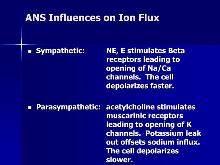 ANS Influences on Ion Flux