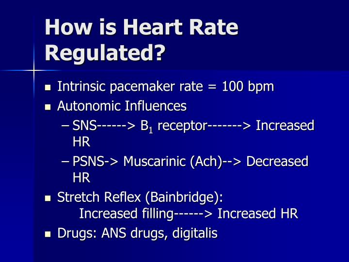 How is Heart Rate Regulated?