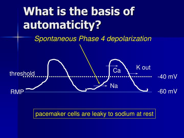 What is the basis of automaticity?