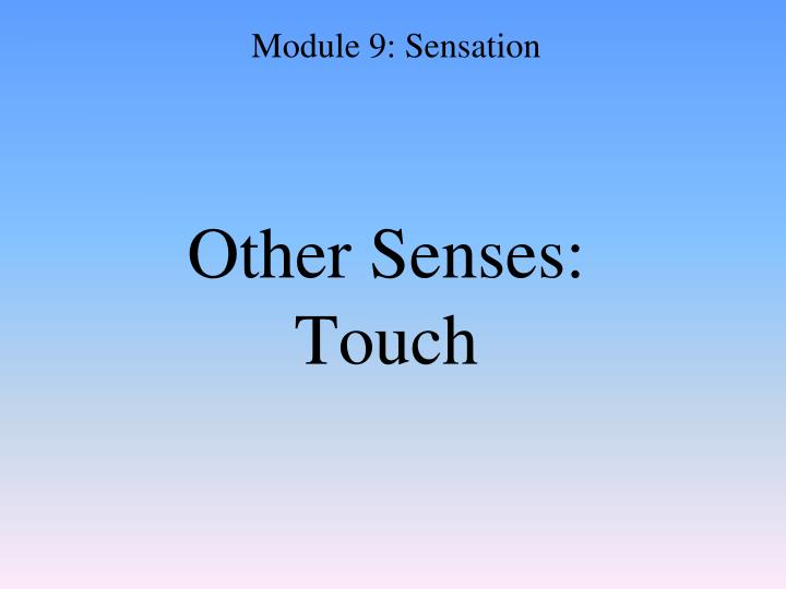 Other Senses: