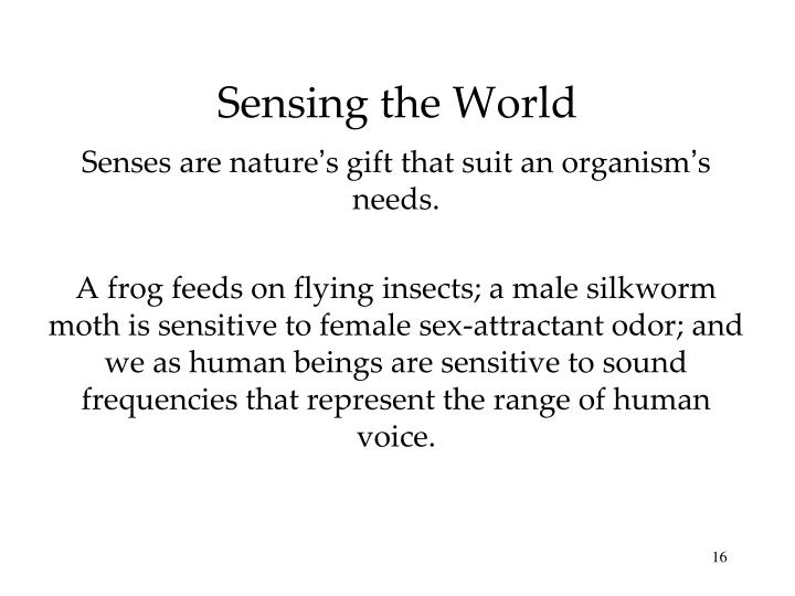 Sensing the World