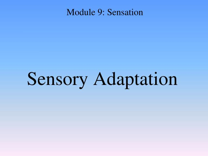 Sensory Adaptation