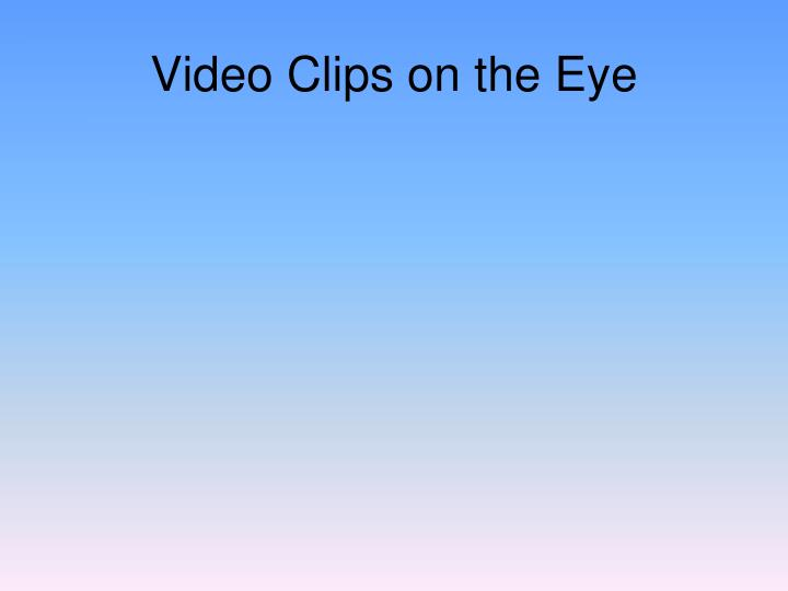 Video Clips on the Eye