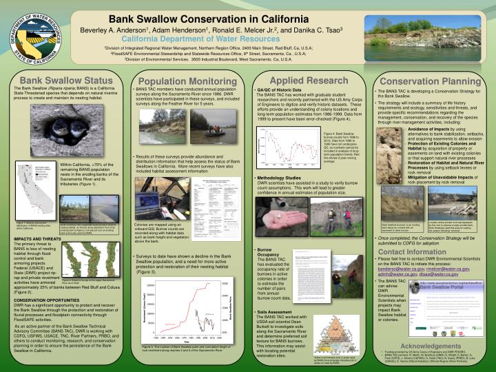 Bank Swallow Conservation in California