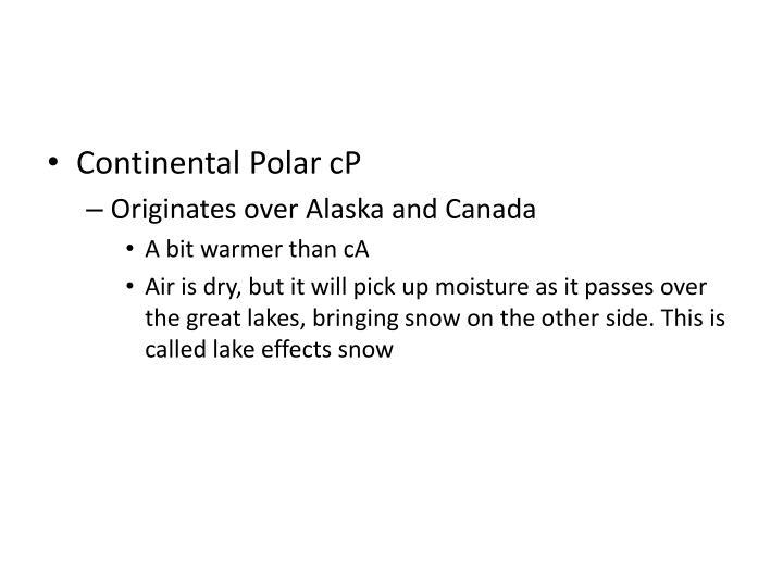 Continental Polar