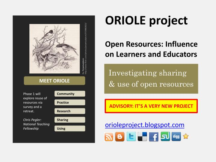 Oriole project