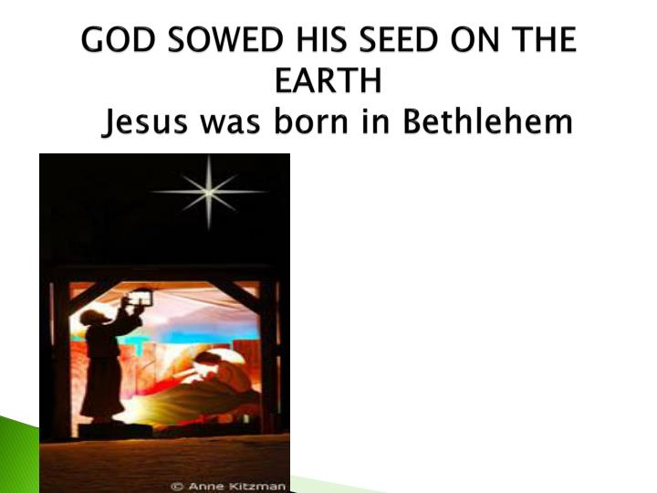 GOD SOWED HIS SEED ON THE EARTH