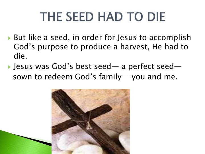 THE SEED HAD TO DIE