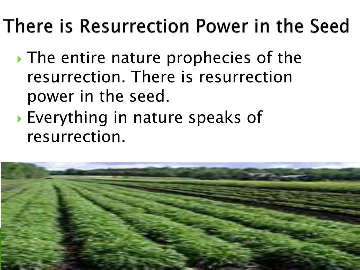 There is Resurrection Power in the Seed