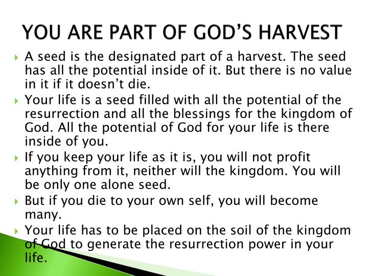 YOU ARE PART OF GOD'S HARVEST
