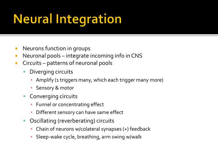 Neural Integration