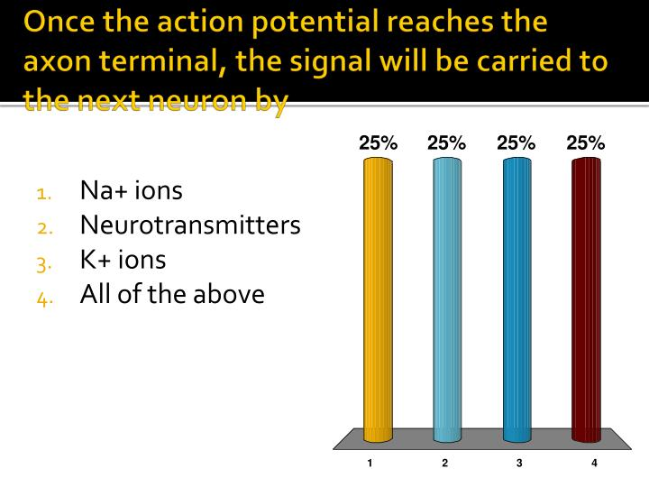 Once the action potential reaches the axon terminal, the signal will be carried to the next neuron by