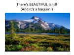 there s beautiful land and it s a bargain