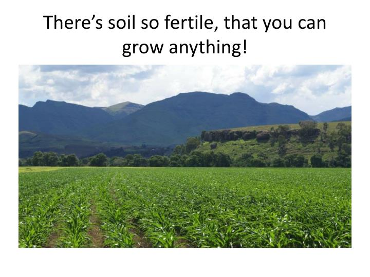 There's soil so fertile, that you can grow