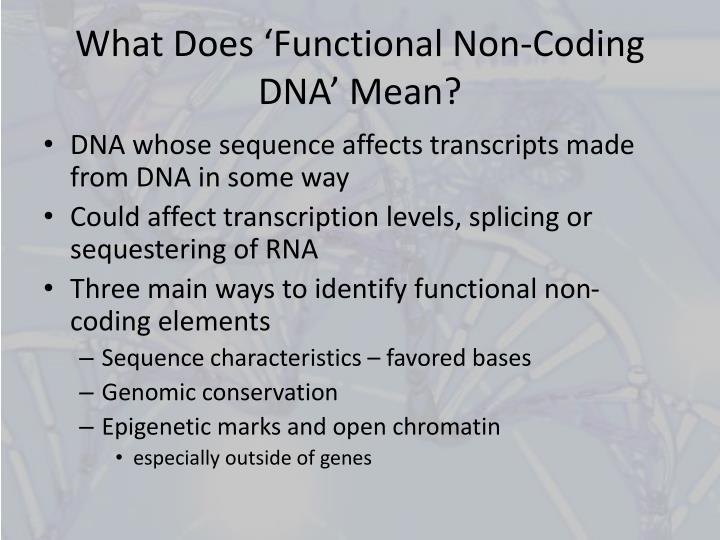 What d oes functional n on coding dna mean