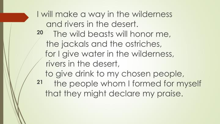 I will make a way in the wilderness