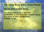 the living stone and a chosen people106