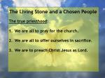 the living stone and a chosen people28