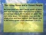the living stone and a chosen people6