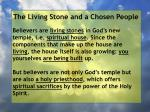 the living stone and a chosen people8