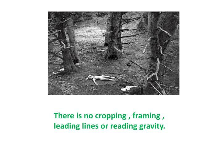 There is no cropping , framing , leading lines or reading gravity.