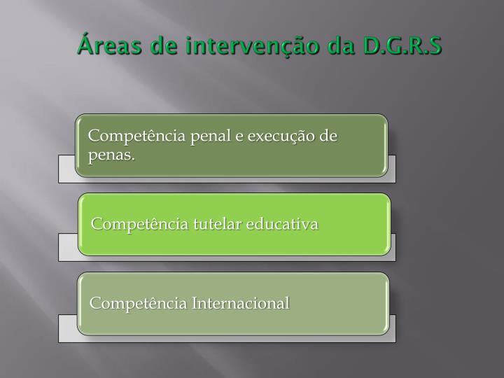 Áreas de intervenção da D.G.R.S