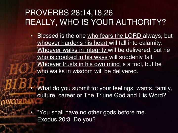 PROVERBS 28:14,18,26