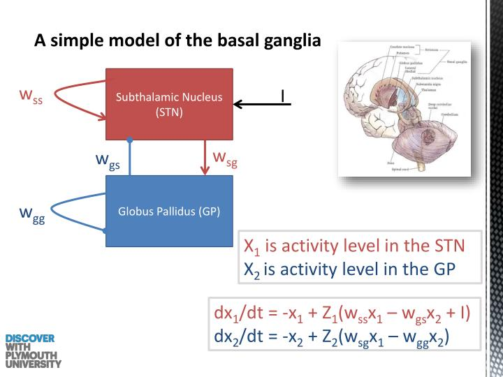 A simple model of the basal