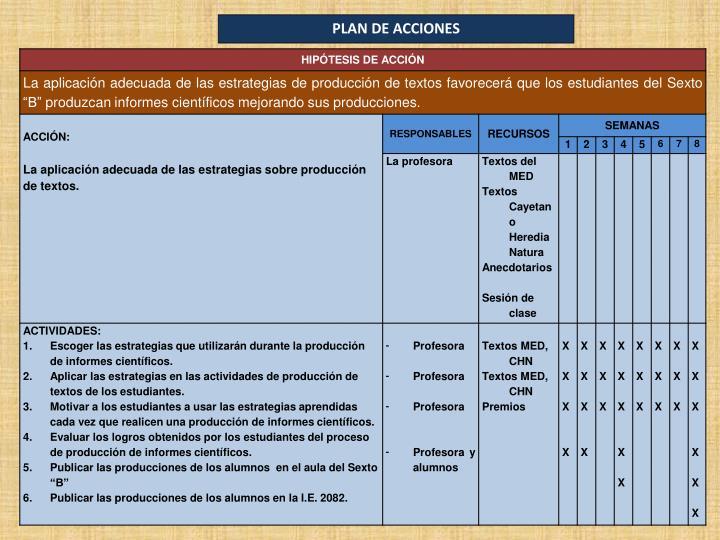 PLAN DE ACCIONES