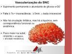 vasculariza o do snc