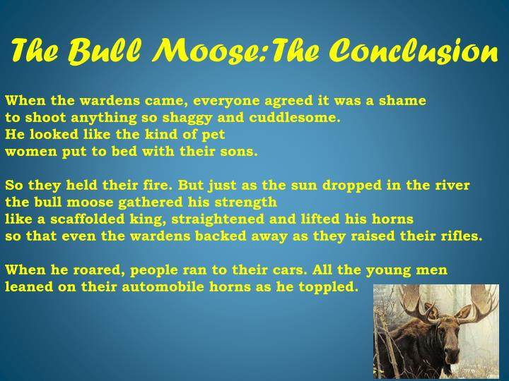 The bull moose the conclusion