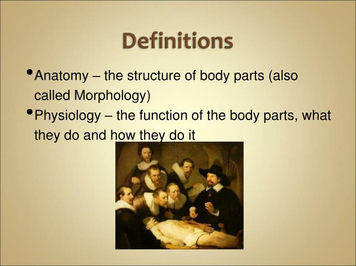 Anatomy – the structure of body parts (also called Morphology)