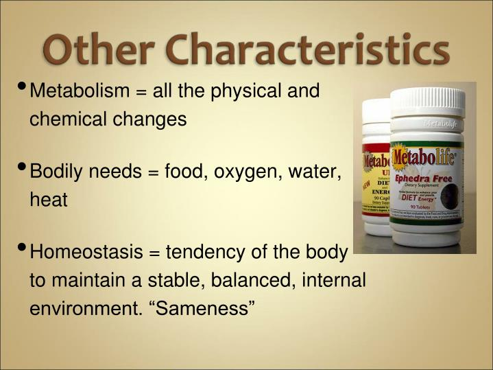 Metabolism = all the physical and chemical changes