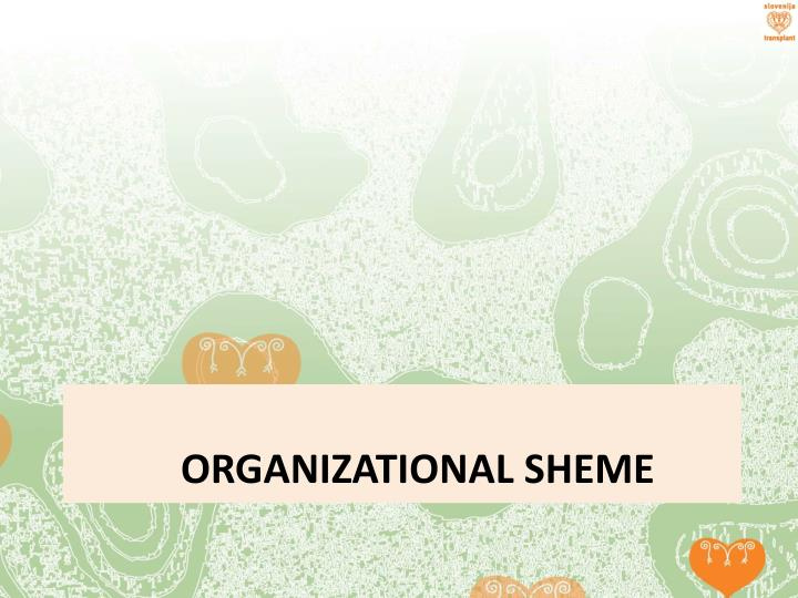 ORGANIZational sheme