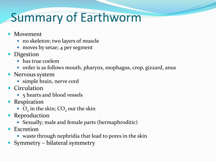 Summary of Earthworm